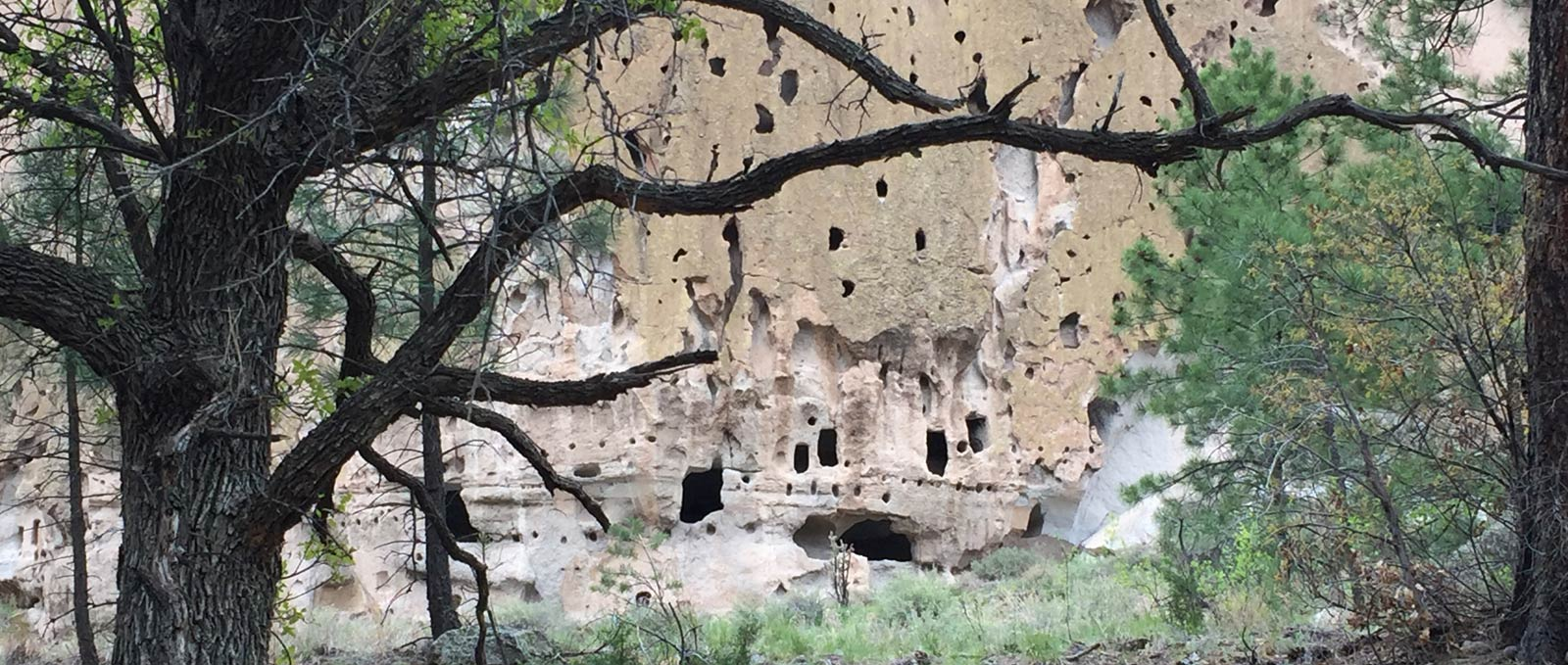 Bandelier Cliff Dwellings through Trees